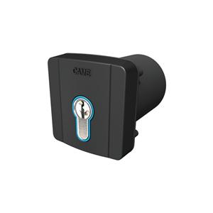 Schlüsseltaster 2-Kanal CAME Unterputz,mit DIN Halbzylinder 30-10,Gehäuse Kunststoff RAL7024